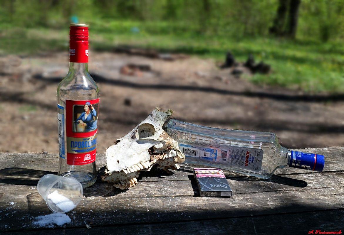 Беспощадный российский пикник на обочине..:) - Андрей Заломленков