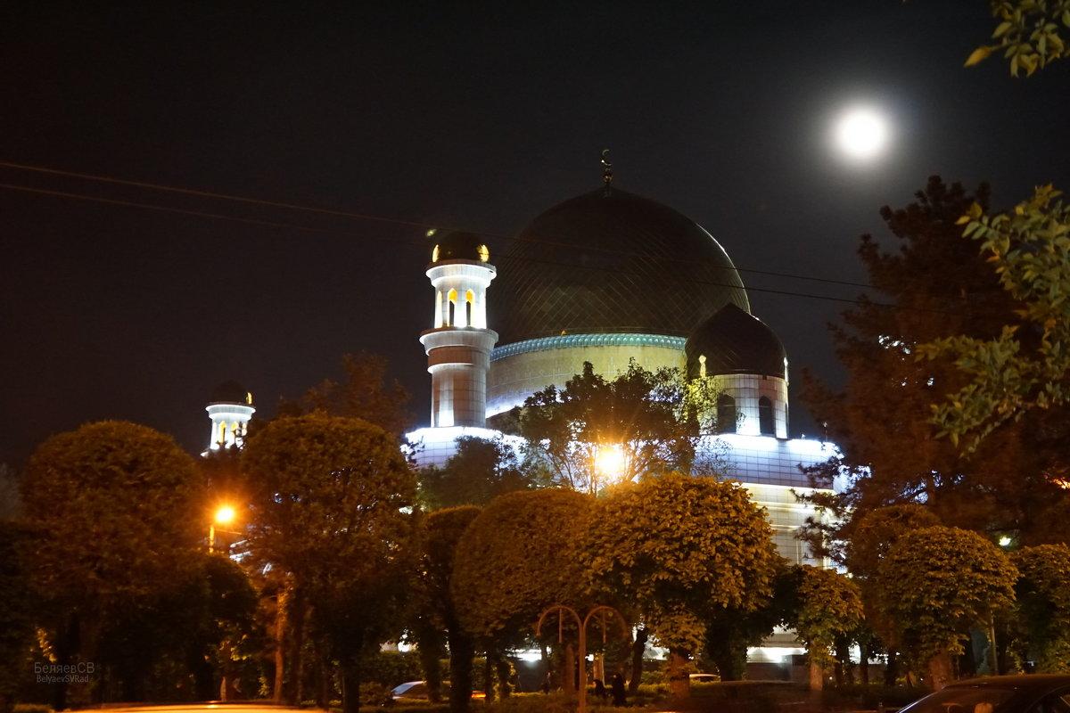В лунном свете - Сергей Беляев