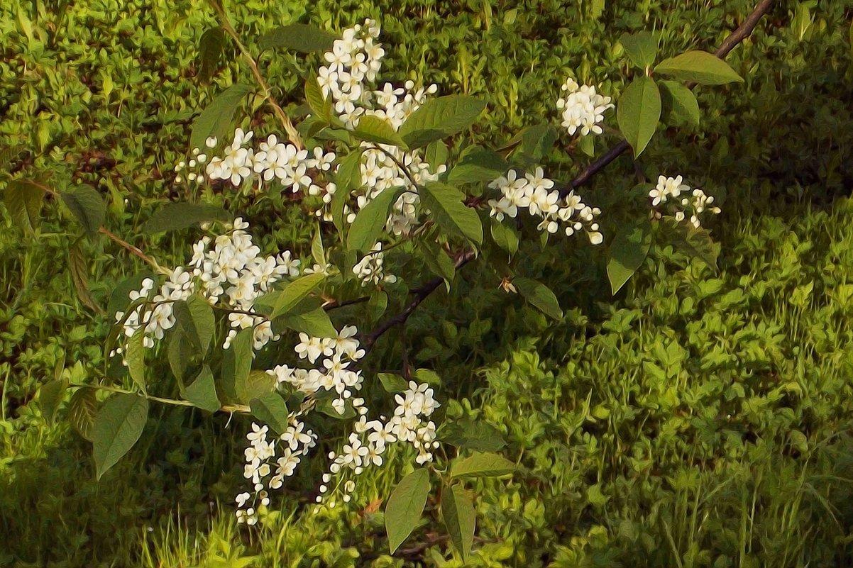 Сказочная погода - Фотогруппа Весна.