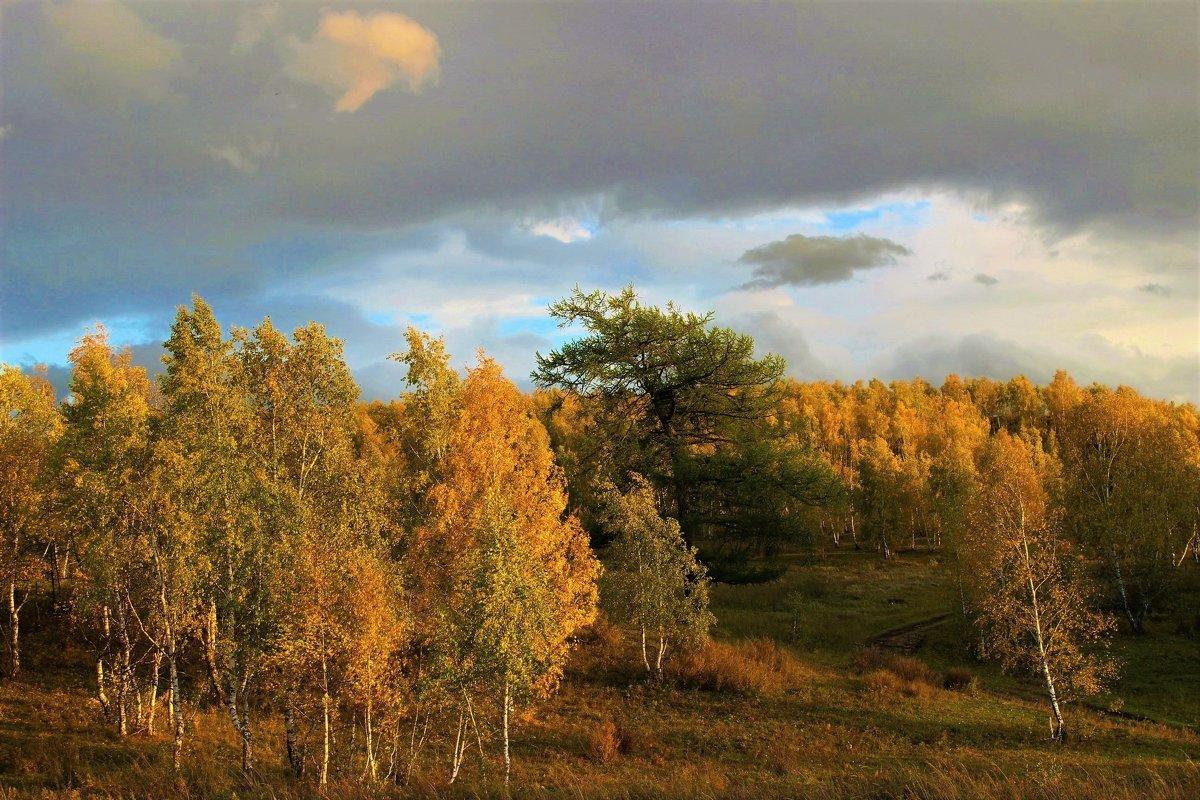 Вечер - Сергей Чиняев