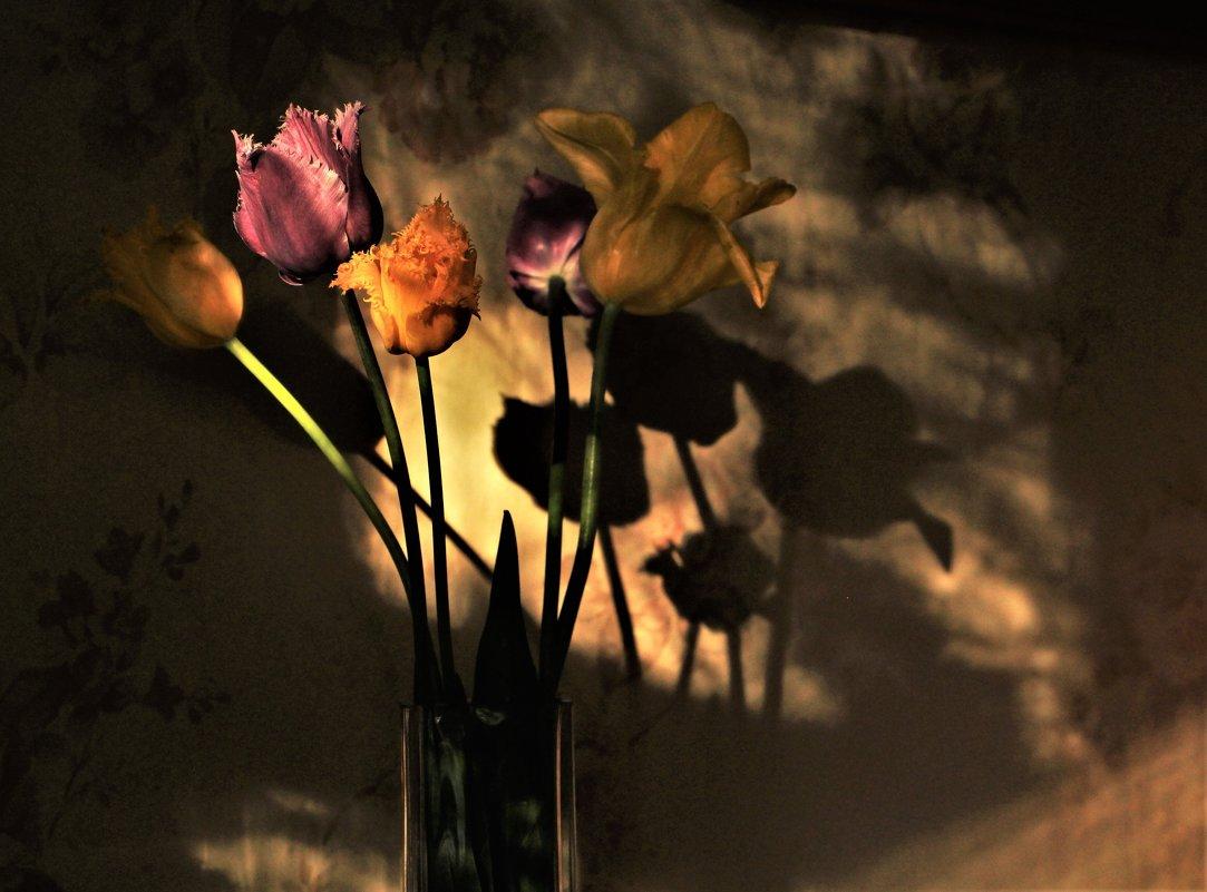 И ночь - не ночь, и день - не день... - veilins veilins