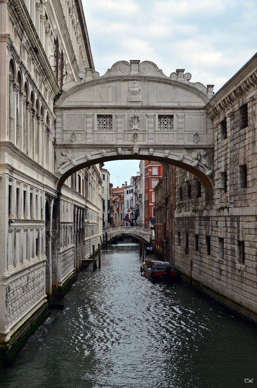 Венеция. Мост вздохов - Татьяна Ларионова