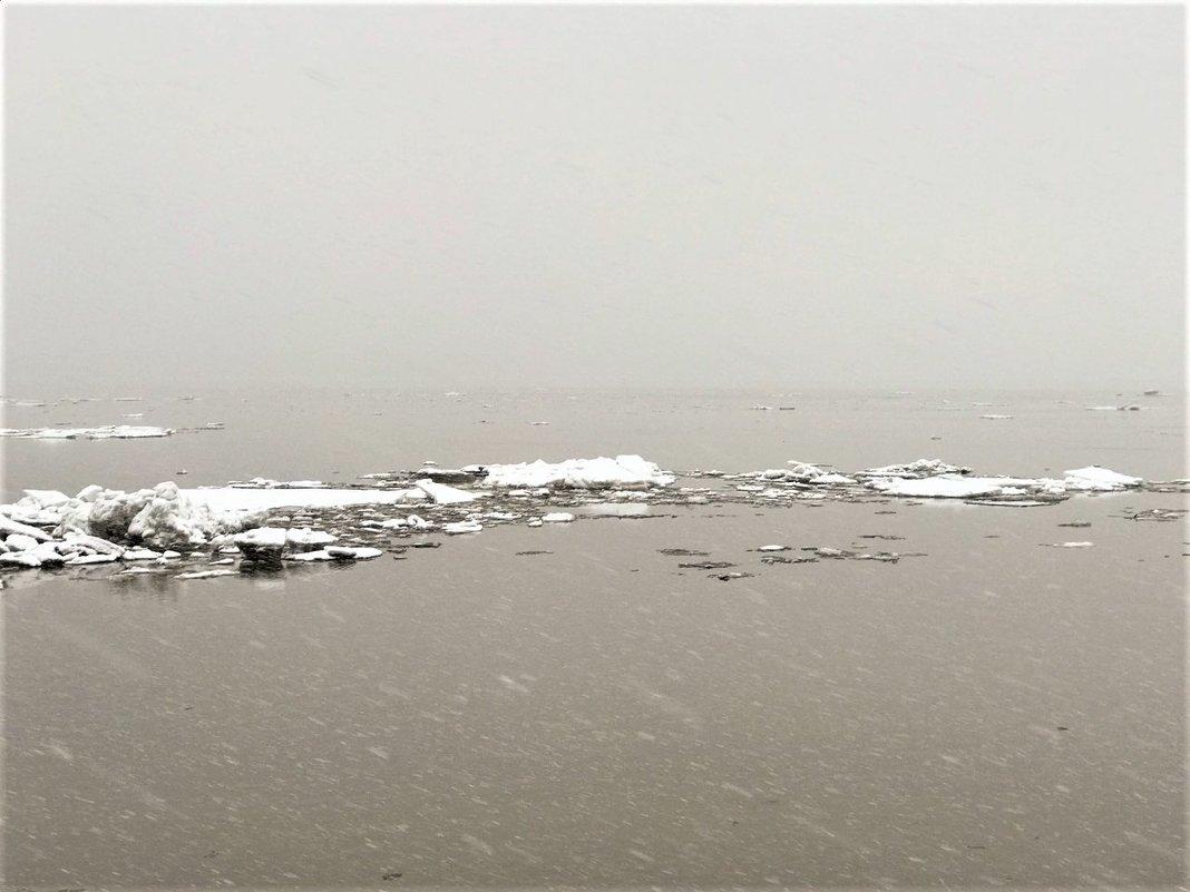 Лед на р.Обь почти прошел.... - Алла ZALLA