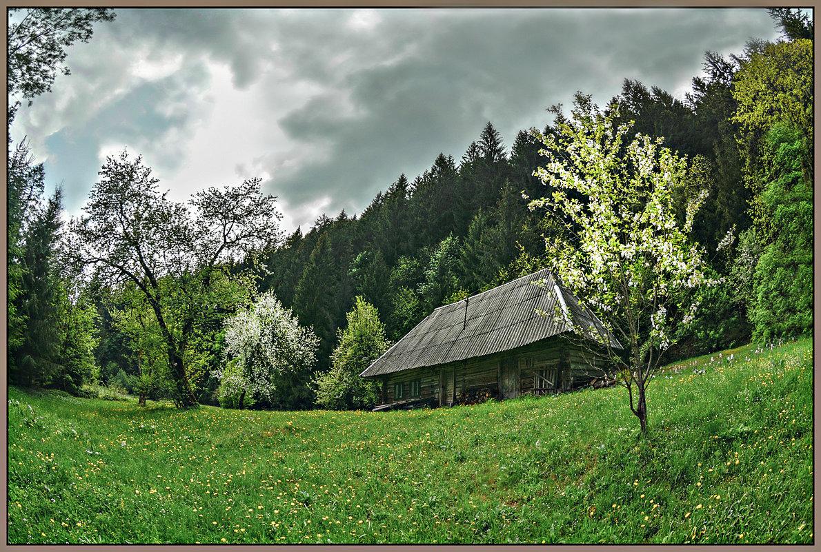 Весна в Карпатах. - Юрий Гординский