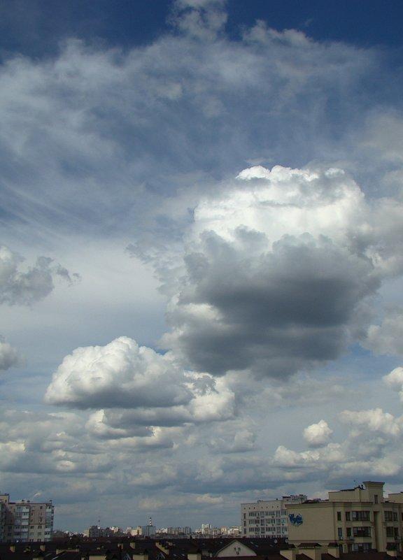 Повышенная облачность - Syntaxist (Светлана)