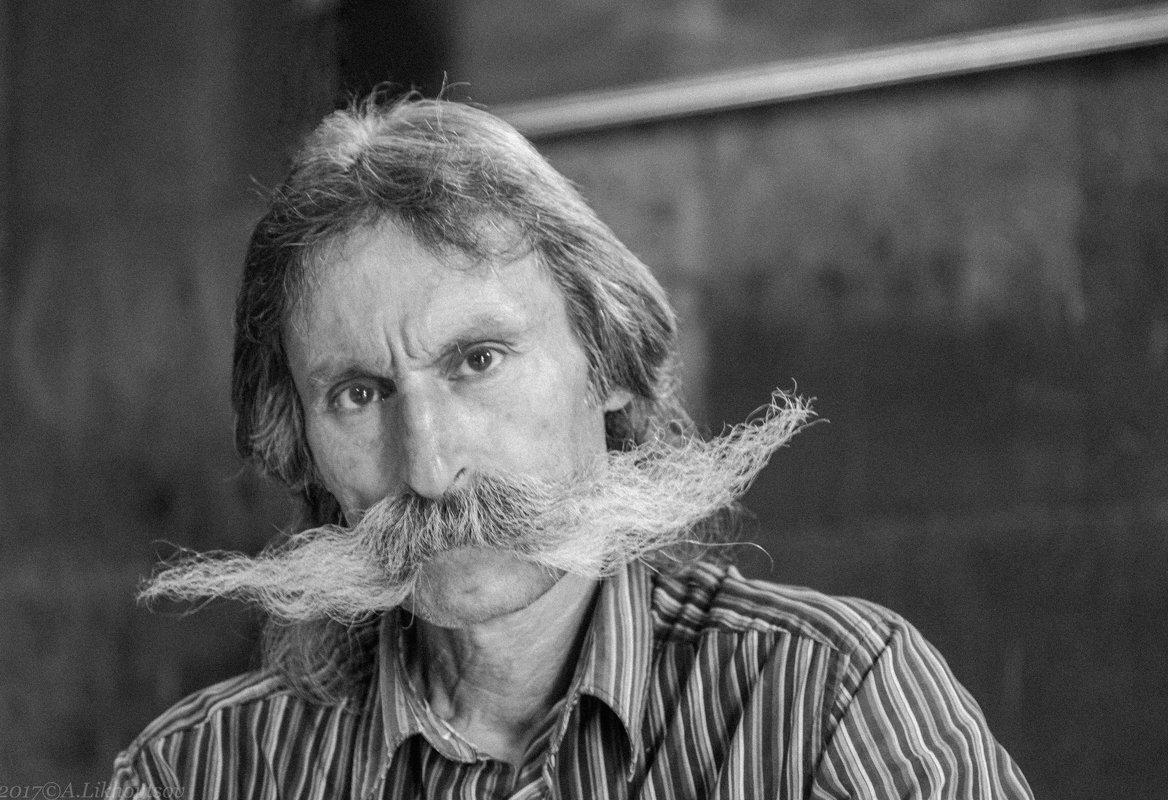 Удивительные усы - Александр Лиховцов