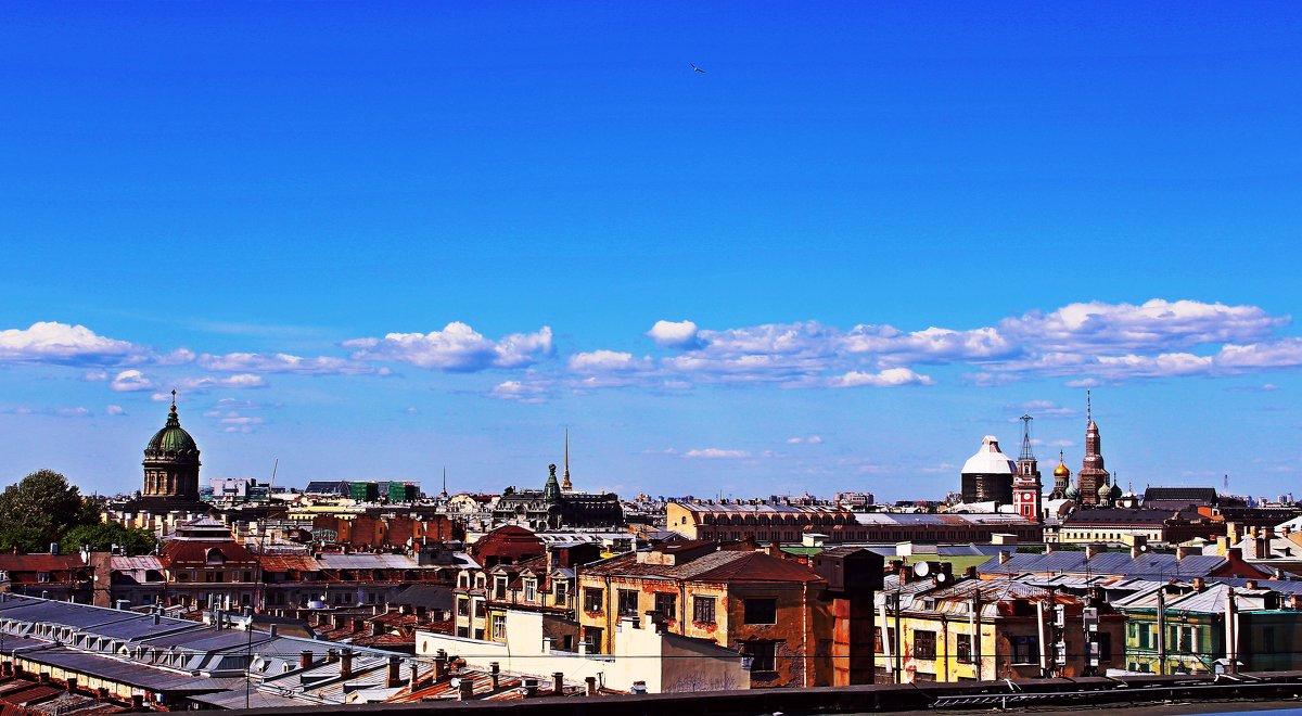 Любуясь Питером, сидя на крыше... - Vladimir Semenchukov