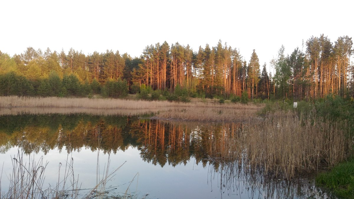 Красоты природы - Оксана Романова