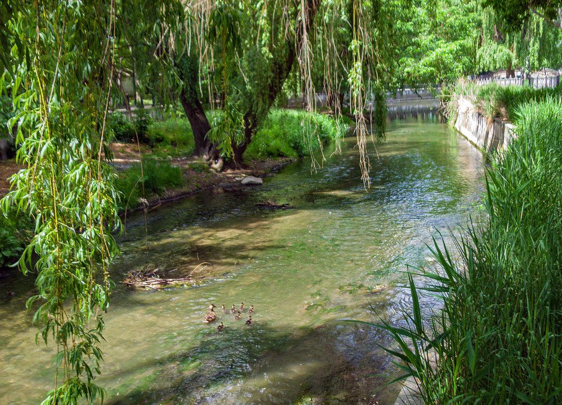 На нашей  речке - Варвара