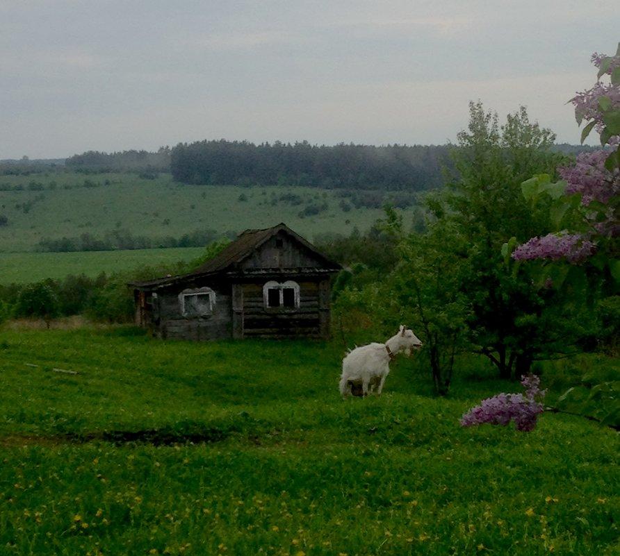 Просто коза - Маруся Маруся