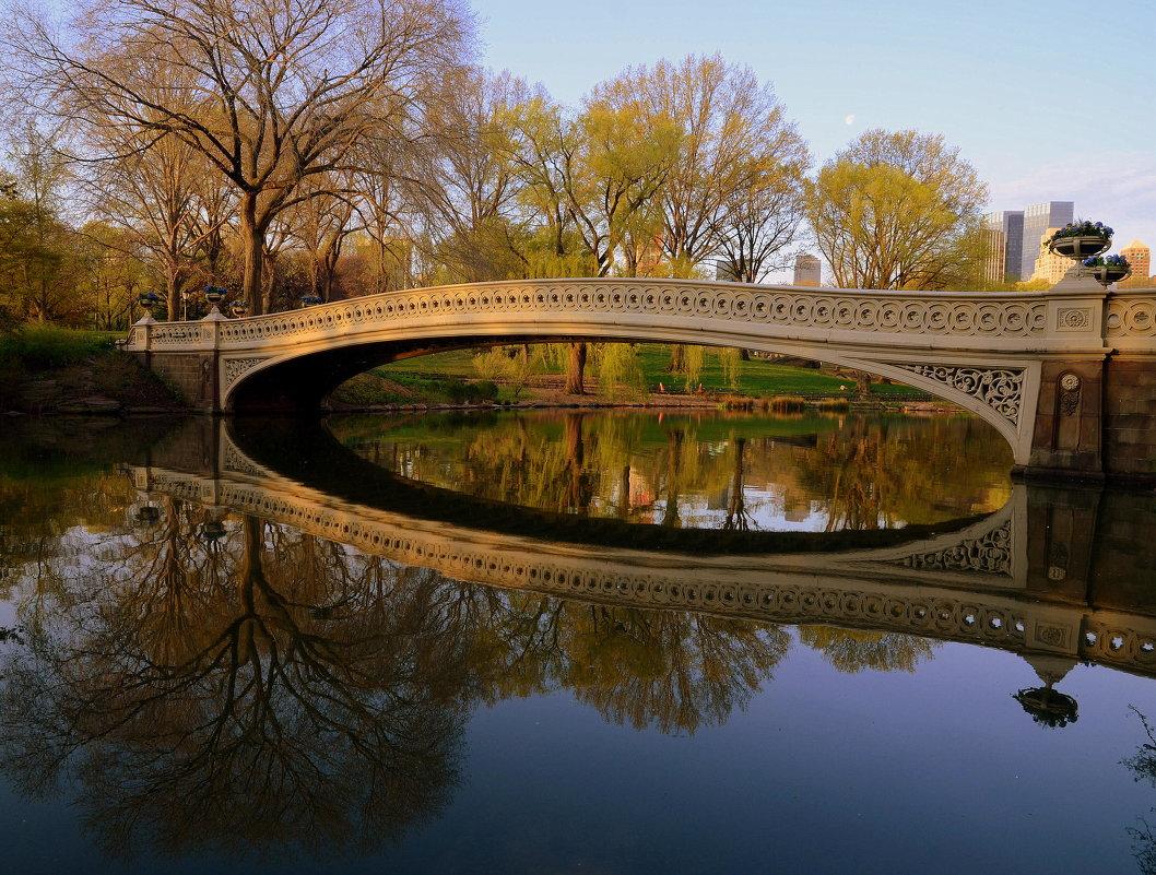 В Центральном парке Нью-Йорка. - Тамара