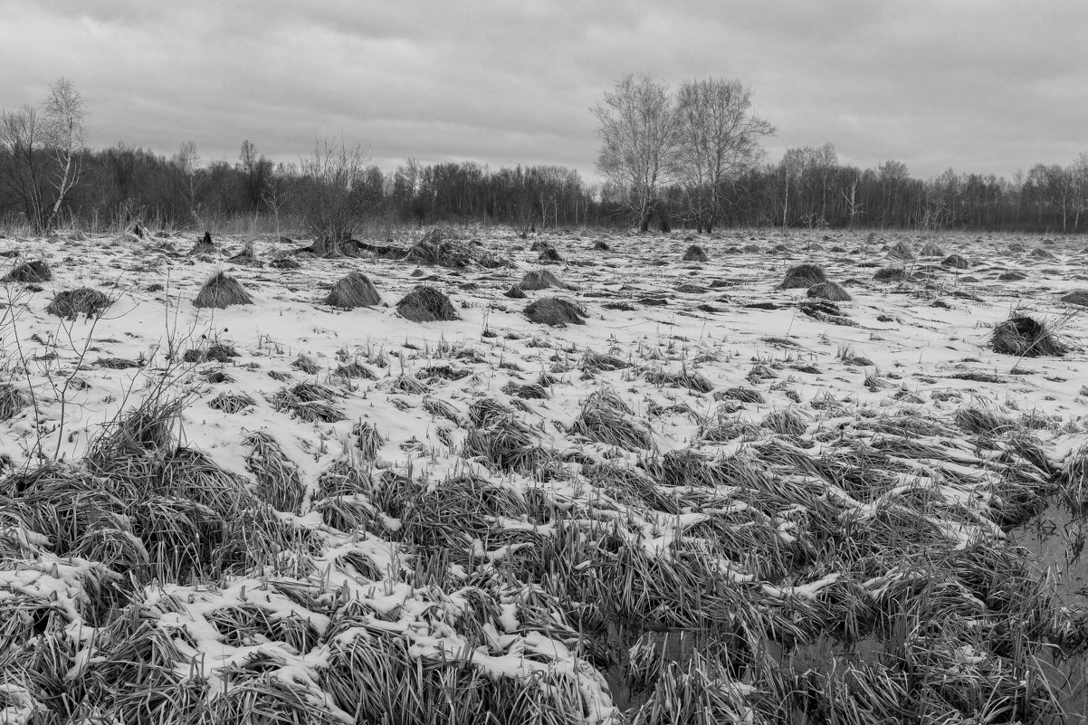 Пейзаж у дороги - Валерий Михмель