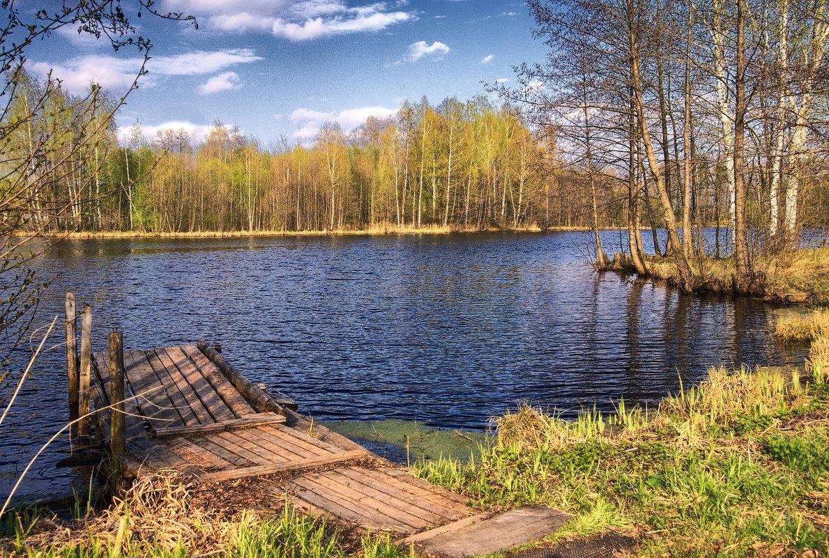 У холодной воды - Владимир Макаров