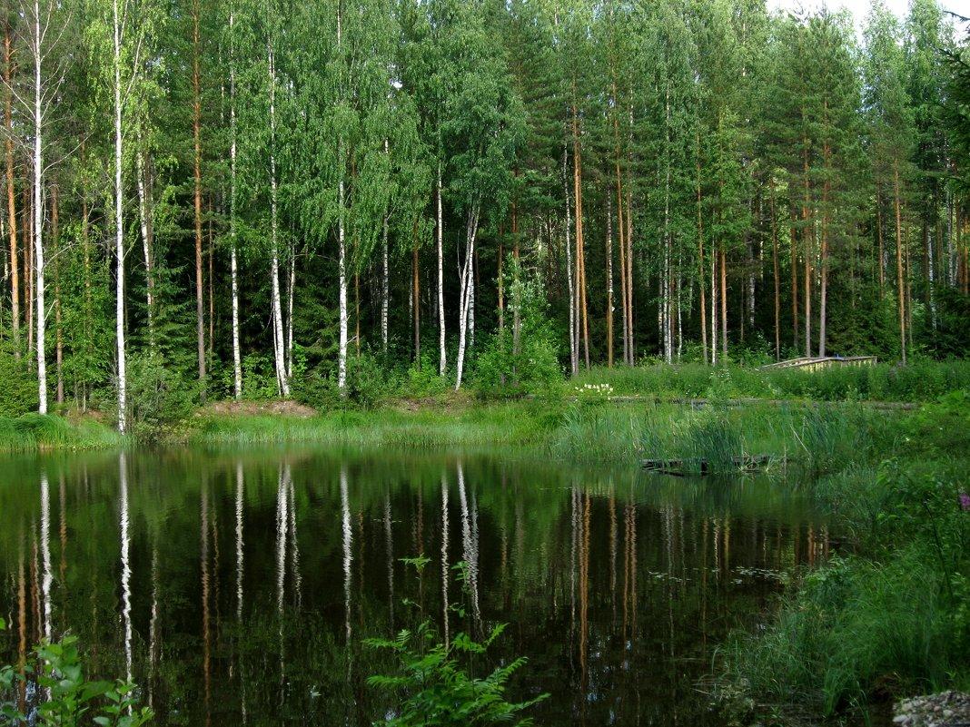Лесное озеро - Надежда