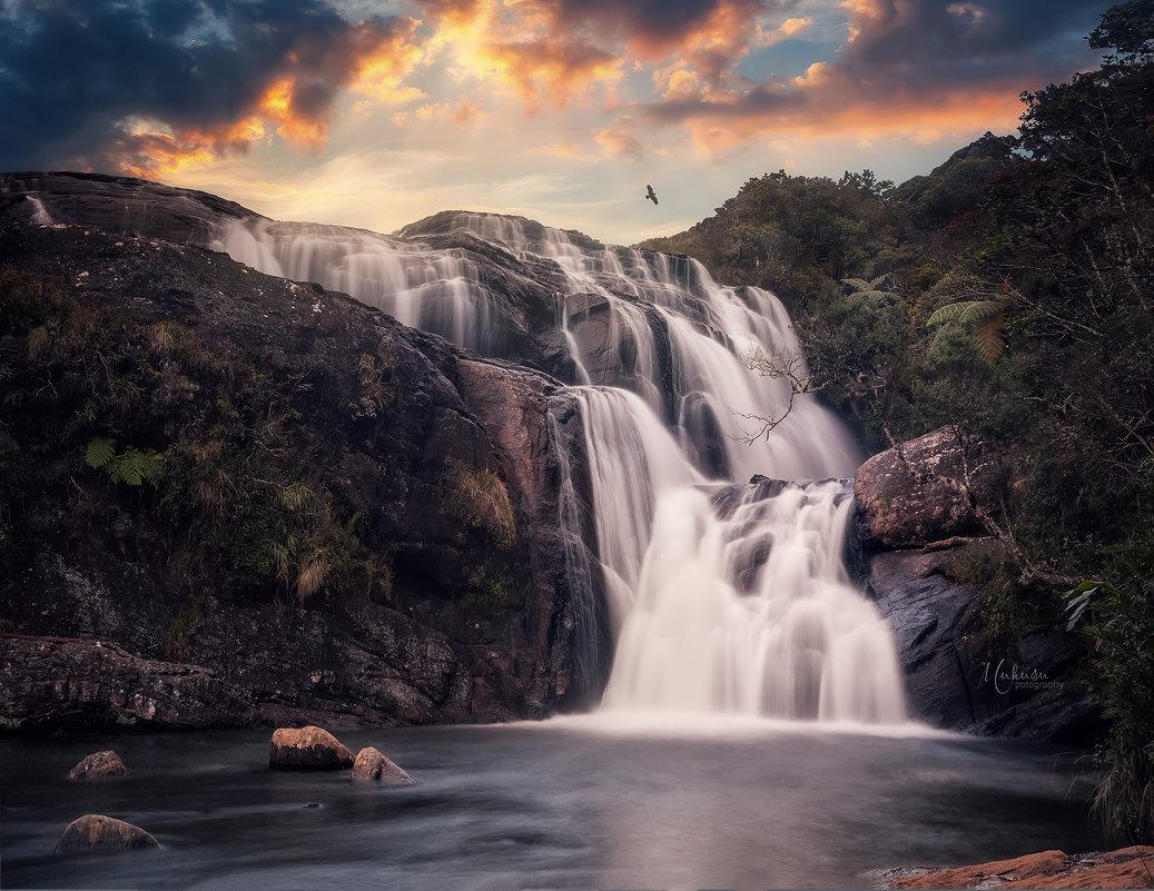 Horton plains national park. Sri Lanka - Алексей Mukusu