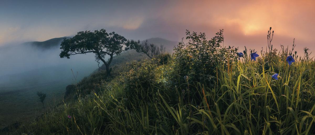 Сказки утреннего тумана - Андрей Кровлин