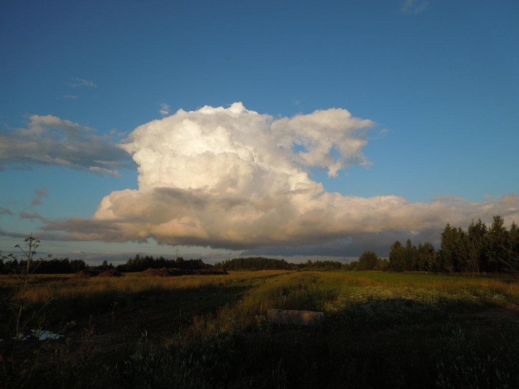 Многоэтажное облако. - Ираида Мишурко
