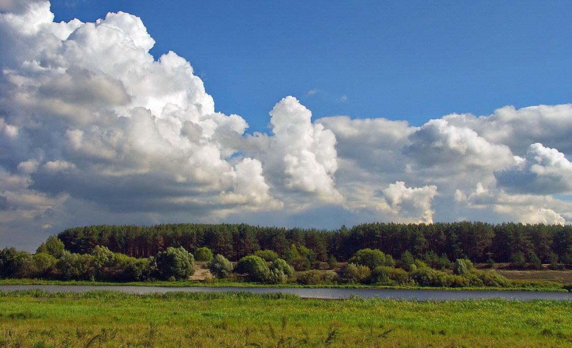 Вечности земные облака... - Лесо-Вед (Баранов)