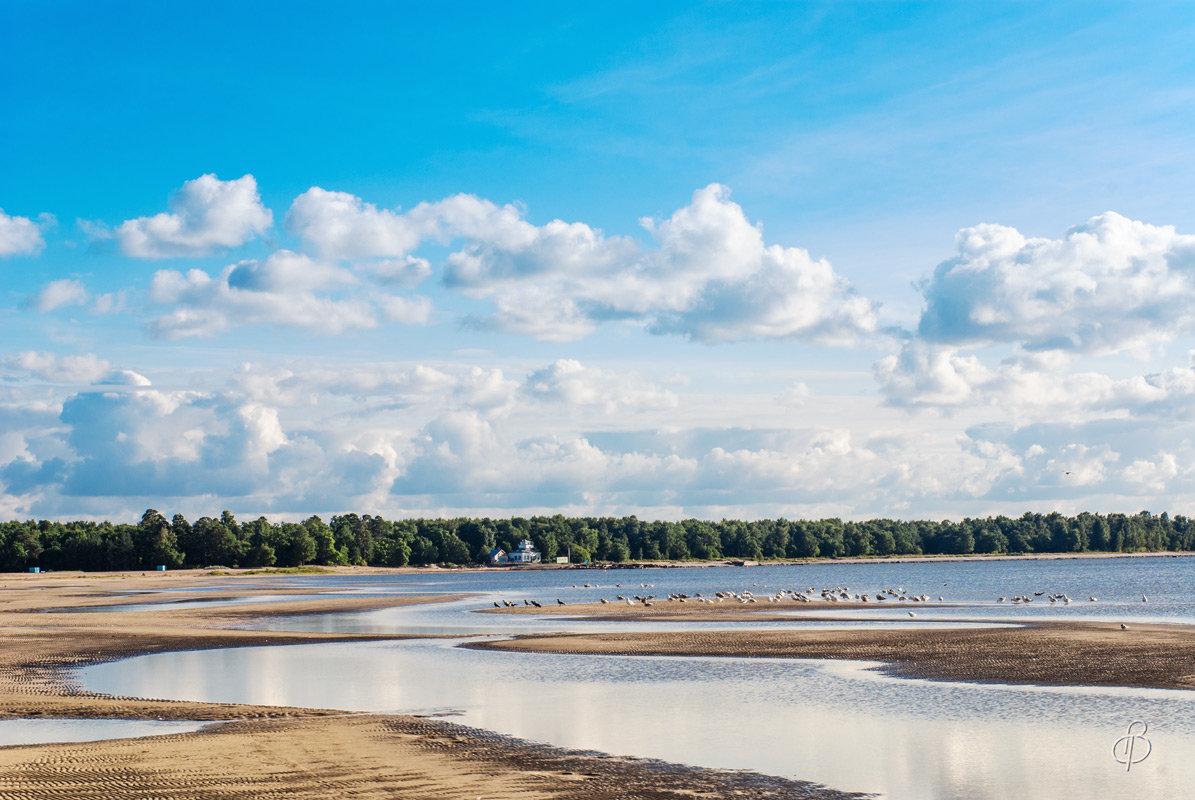 Финский залив (8) - Виталий