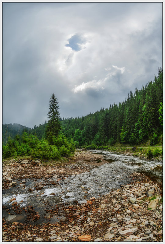 После дождя... - Юрий Гординский