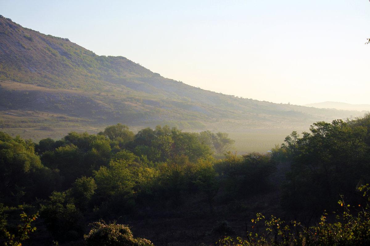 Утро в долине. - barsuk lesnoi