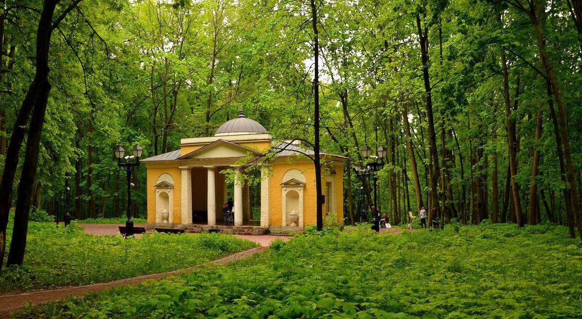 Беседка в парке - Владимир Болдырев