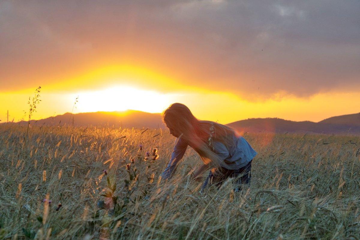на закате в поле - Alexandr Staroverov