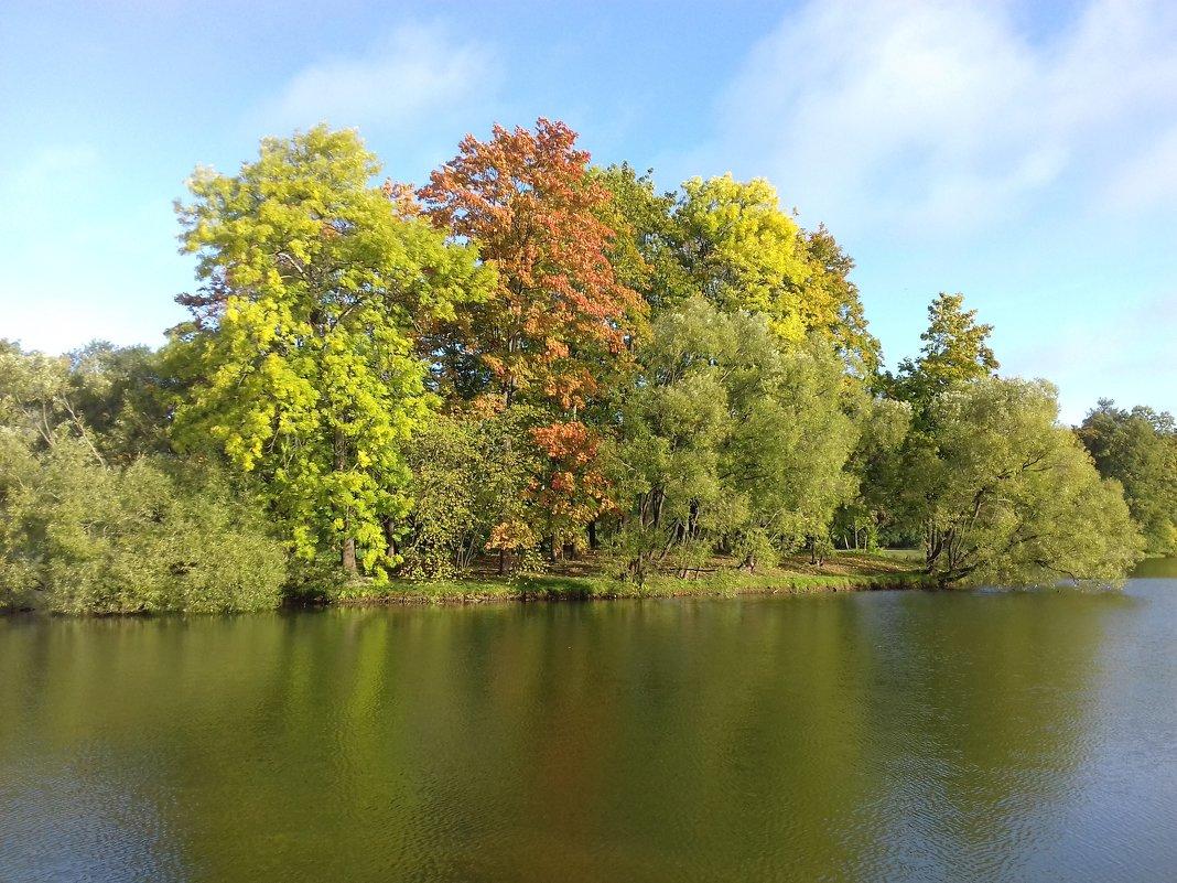 Осень - Сапсан