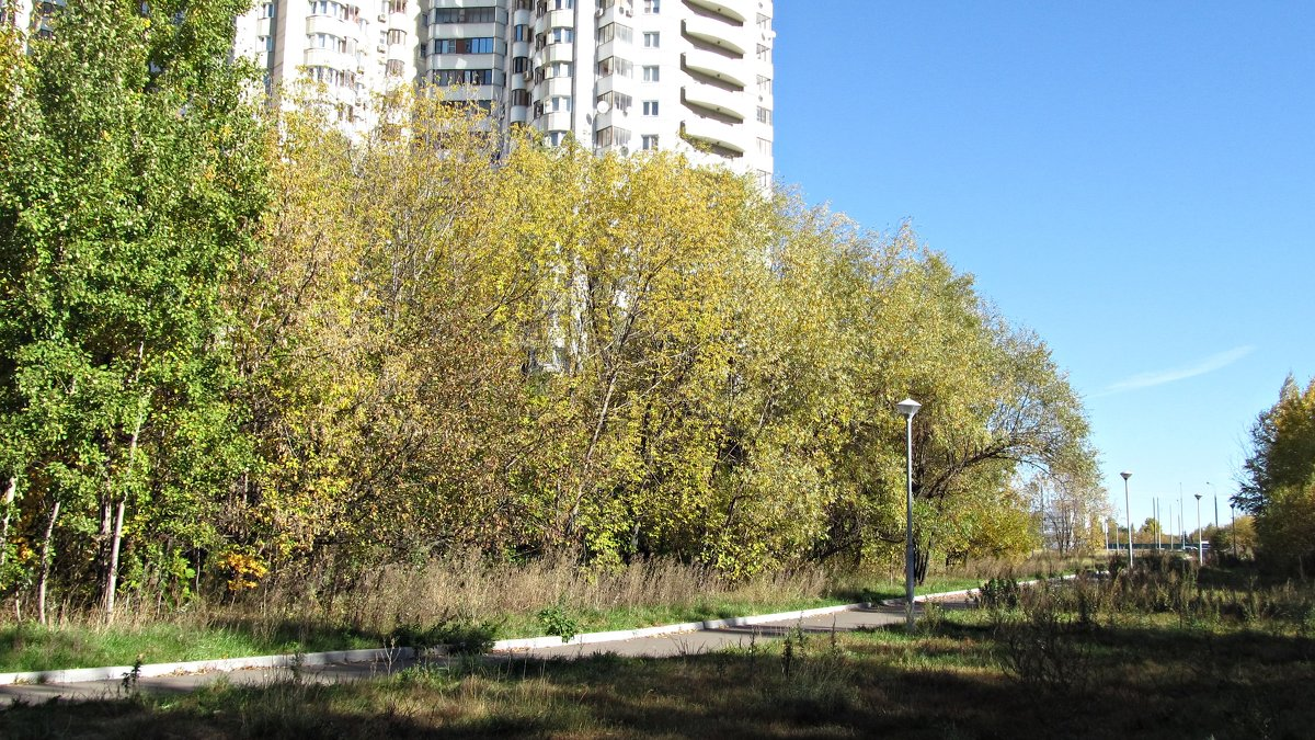 Осень пришла в Москву - Юрий