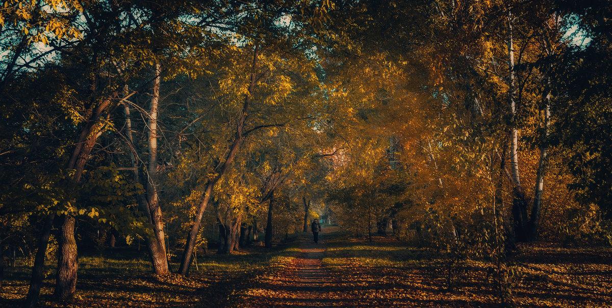 Осенним утром в парке. - Виктор Иванович