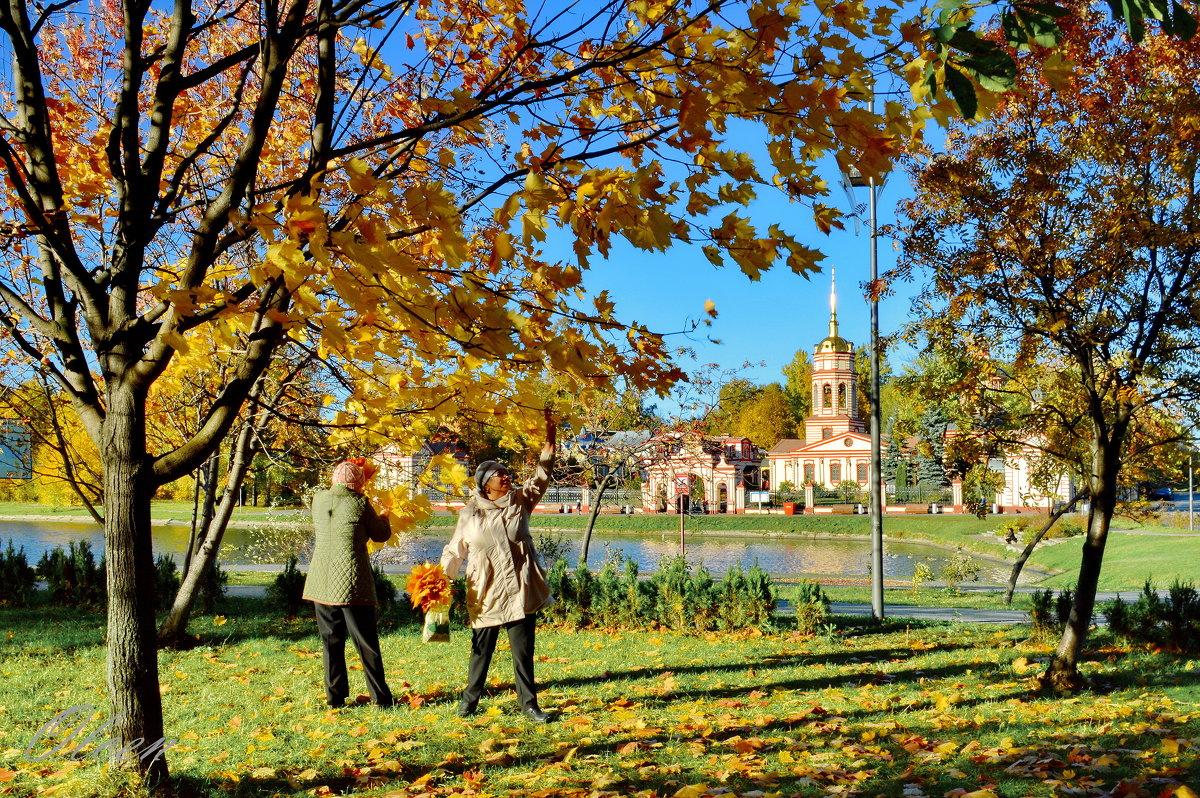 Золотая осень в Алтуфьево - Olcen Len