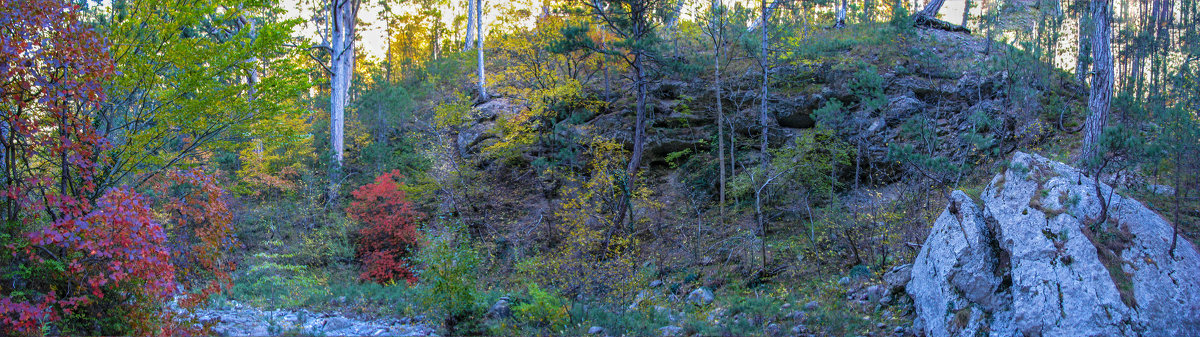 Осенняя панорама - Варвара
