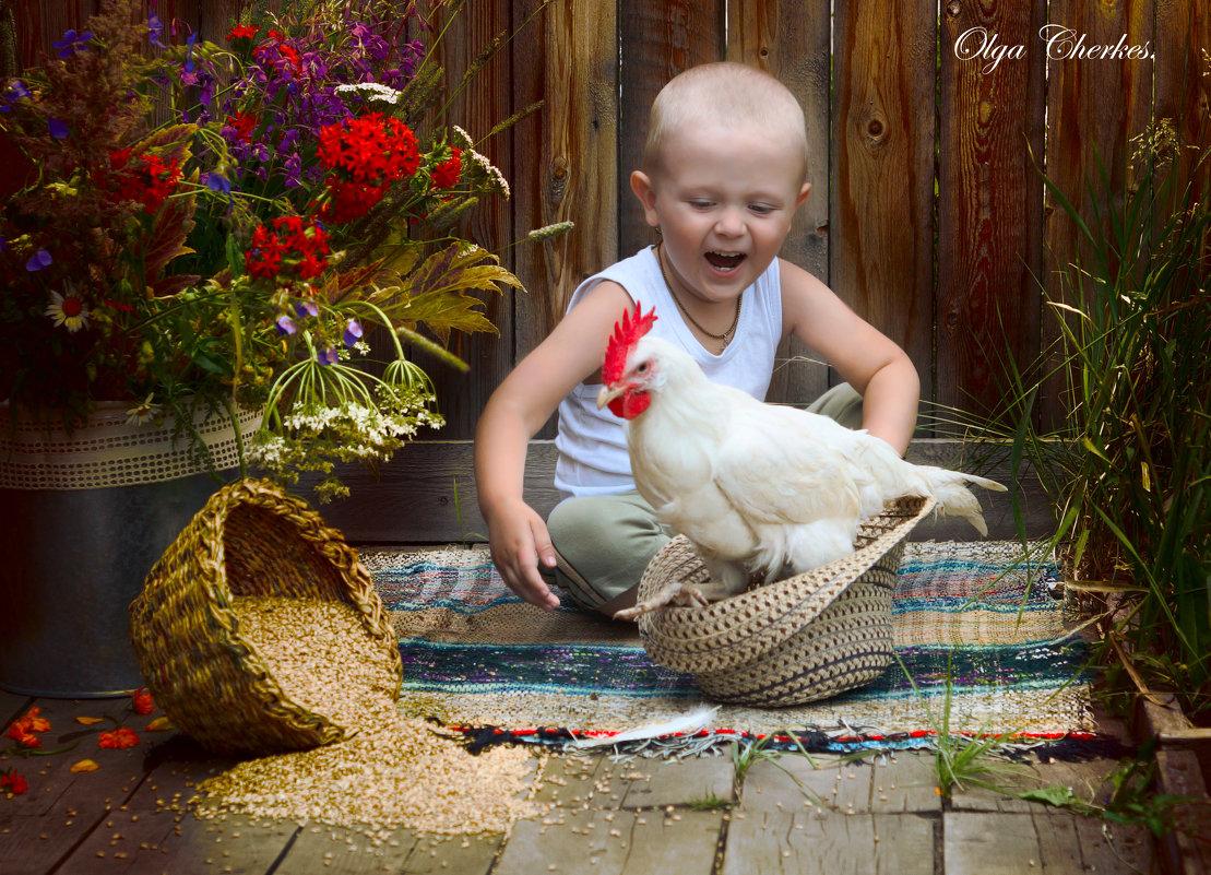 Мальчик и петушок - Ольга Черкес
