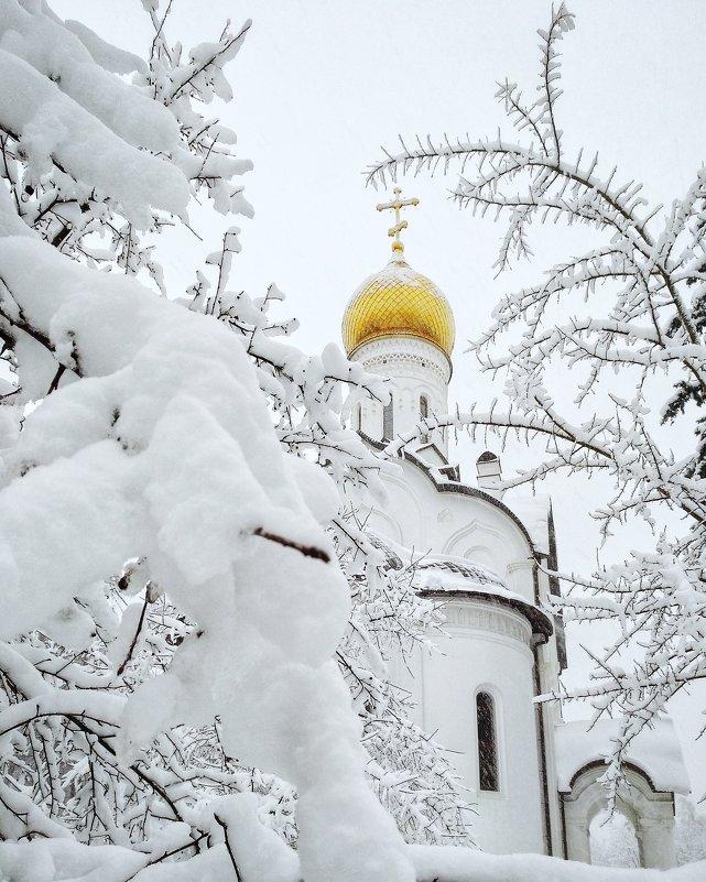 В снегах - Сергей Малашкин