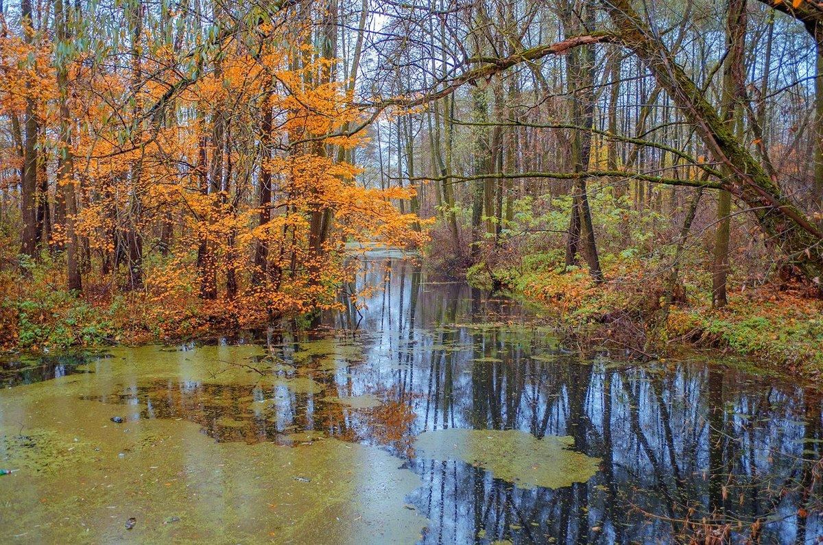 Над тихой речкой - Сергей Тарабара