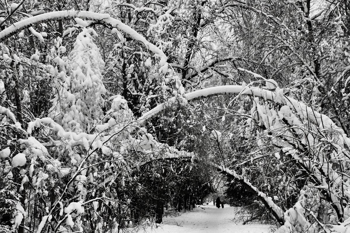 Да  ,были зимы... - олег свирский