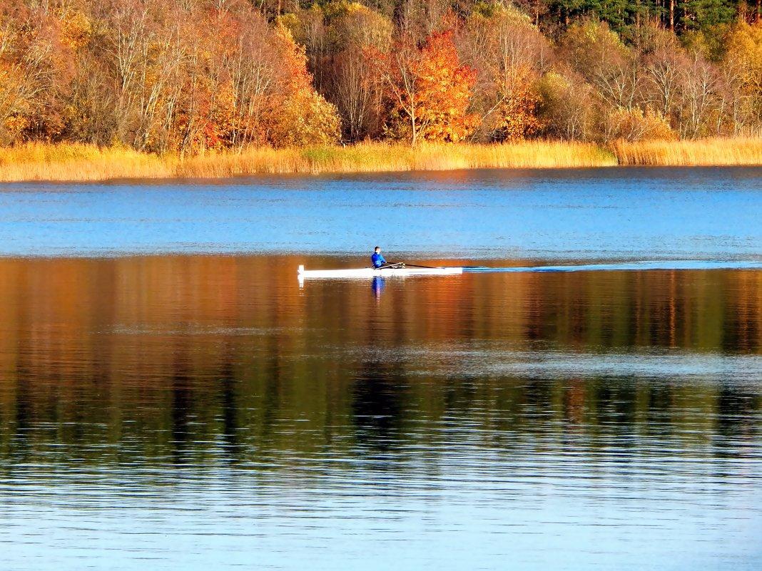 осень на реке - linnud