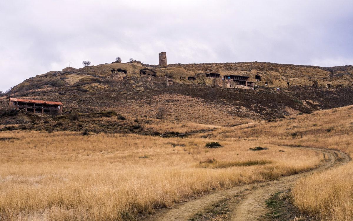 вид на монастырь из пустыни - Лариса Батурова