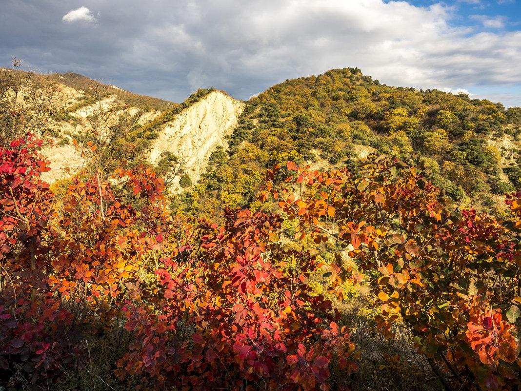 Грузия, горы, осень - Лариса Батурова