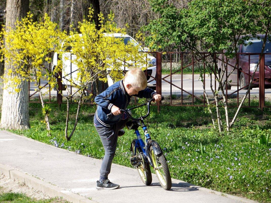 С другом велосипедом - Татьяна Смоляниченко