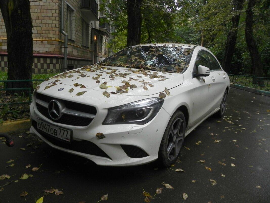 "Осенний ""Mercedes"" - Oleg4618 Шутченко"