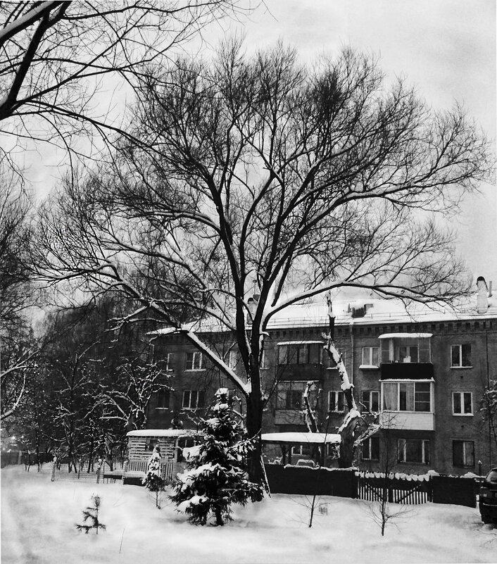 Зимний пейзаж - Марина Кушнарева