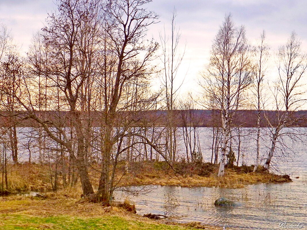 Майский вечер на Онежском озере - Raduzka (Надежда Веркина)