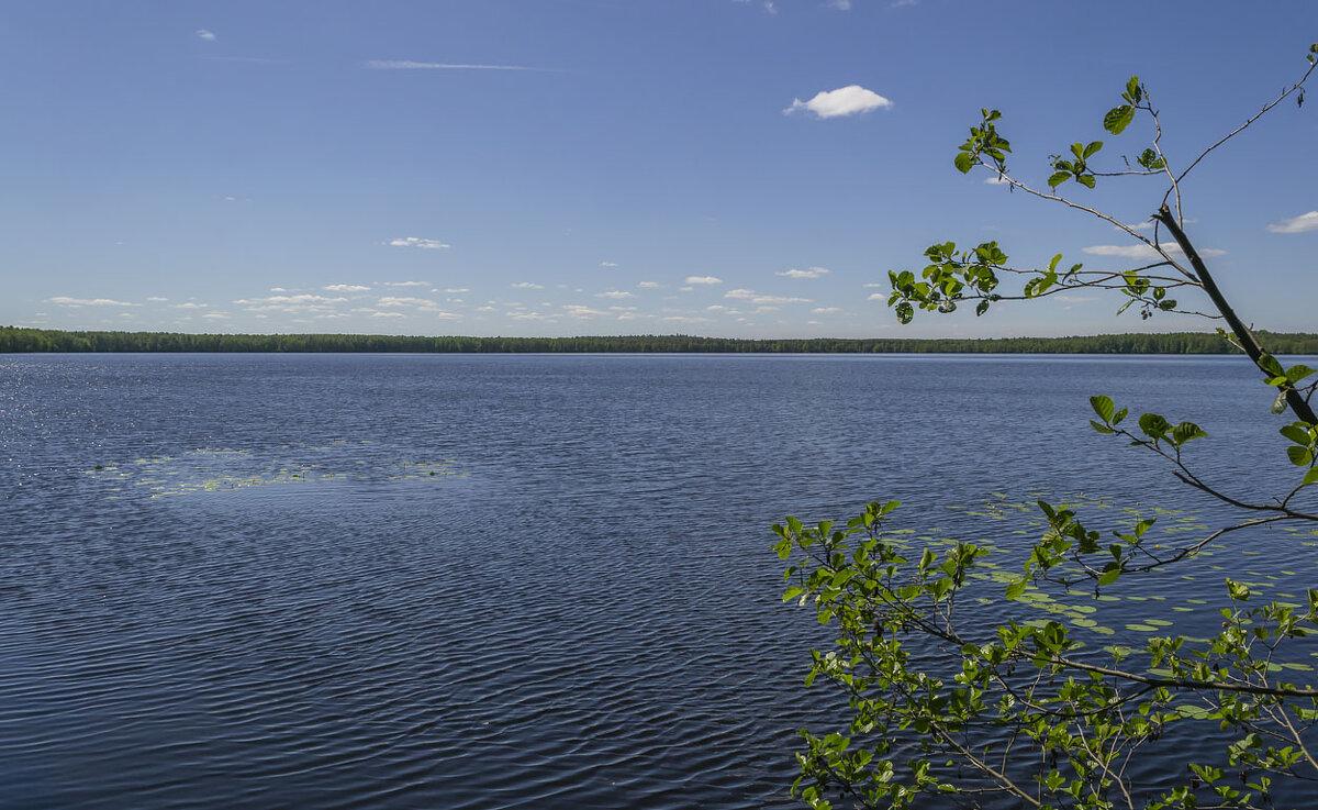 На озере - Сергей Цветков