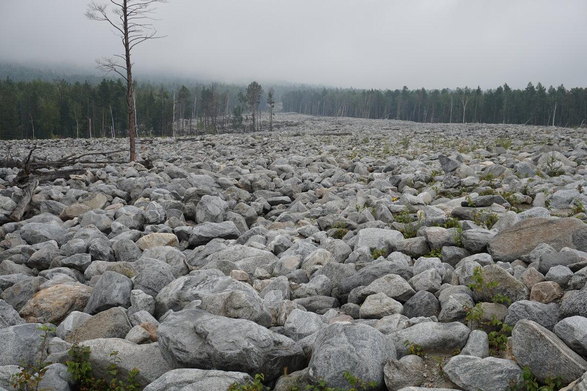 Каменная река на месте сходя селя - Лариса Рогова