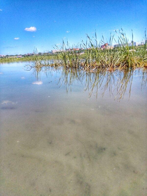 Речка в городе Новосибирске - Света Кондрашова