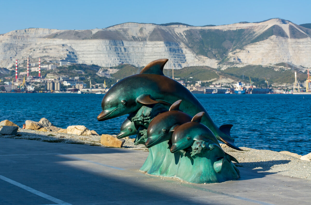 Дельфины на волне - Grey Bishop