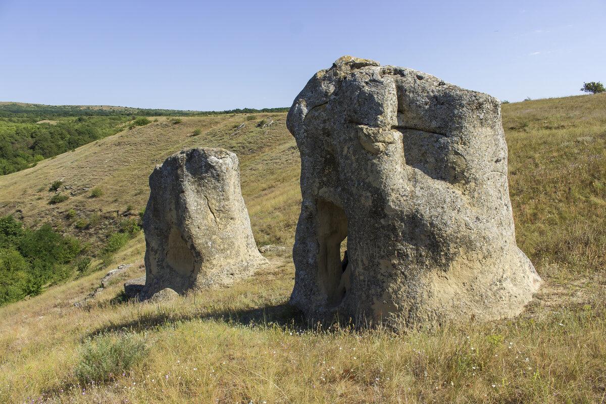 Каменные слоны - АНДРЕЙ ШЕВЧЕНКО