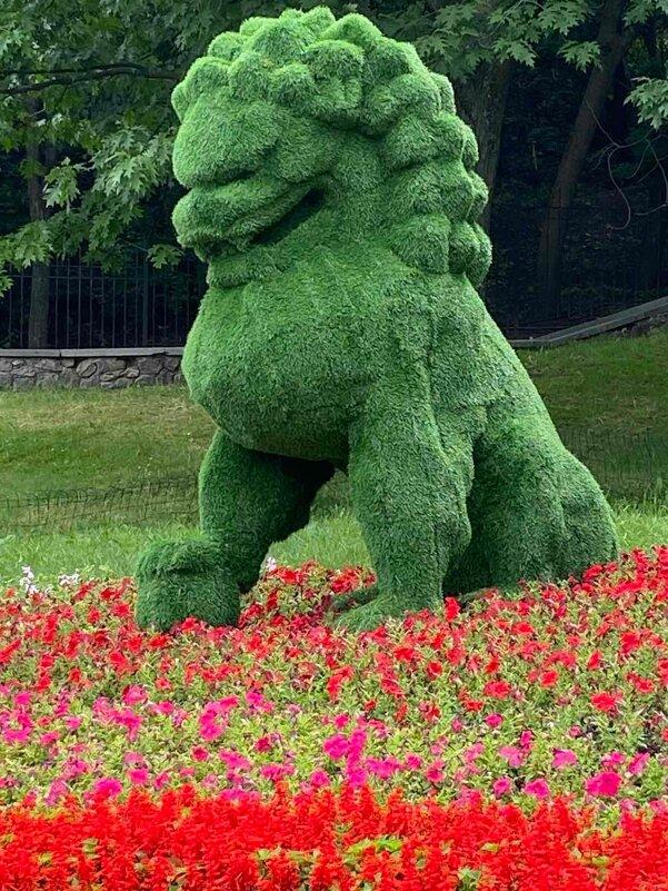 Зелёненький он был... - Тамара Бедай