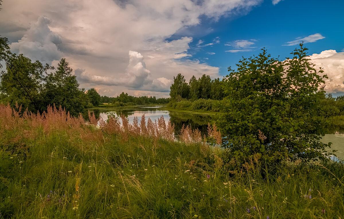 Лето - это маленькая жизнь #2 - Андрей Дворников